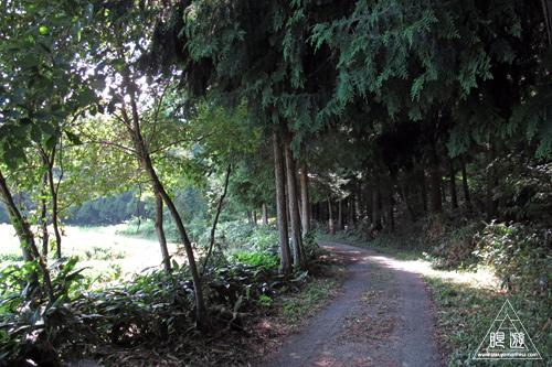 258 赤名湿地 ~ヒツジグサの花~_c0211532_1842437.jpg