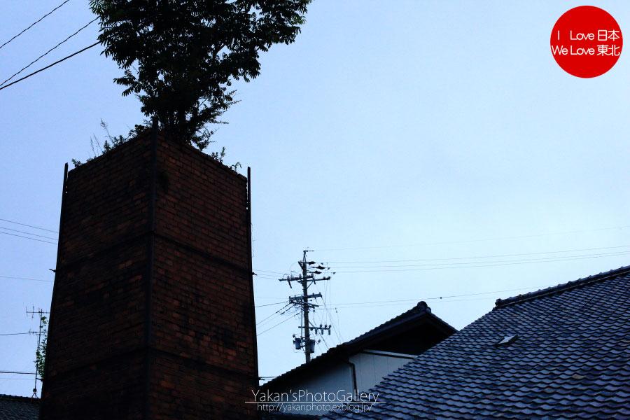 常滑「やきもの散歩道」散策 ~鬼瓦、屋根編~_b0157849_17122962.jpg