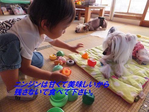 f0179203_7313683.jpg