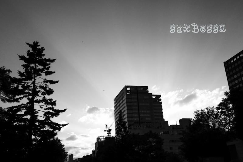 f0033205_1710429.jpg