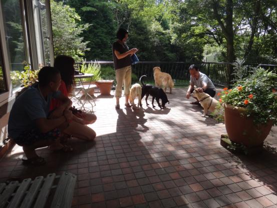 えっちゃんの先輩犬_f0064906_1822993.jpg