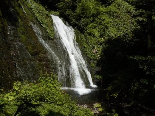 2012年8月22日(水):滝とダムと池、そしてヒマワリとエゾリンドウ[中標津町郷土館]_e0062415_2040566.jpg