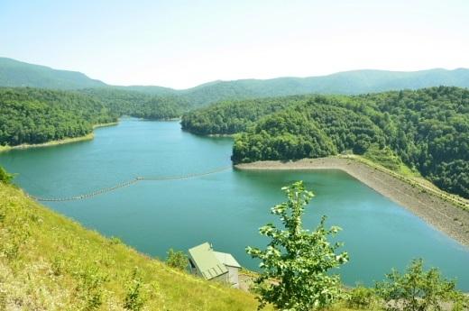 2012年8月22日(水):滝とダムと池、そしてヒマワリとエゾリンドウ[中標津町郷土館]_e0062415_20411031.jpg