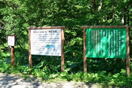 2012年8月22日(水):滝とダムと池、そしてヒマワリとエゾリンドウ[中標津町郷土館]_e0062415_20412084.jpg