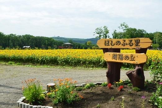 2012年8月22日(水):滝とダムと池、そしてヒマワリとエゾリンドウ[中標津町郷土館]_e0062415_20413935.jpg