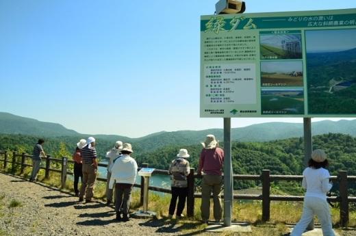 2012年8月22日(水):滝とダムと池、そしてヒマワリとエゾリンドウ[中標津町郷土館]_e0062415_2041398.jpg
