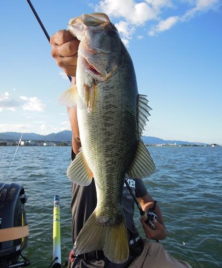 8月19日 琵琶湖ガイド。_f0135385_0492489.jpg