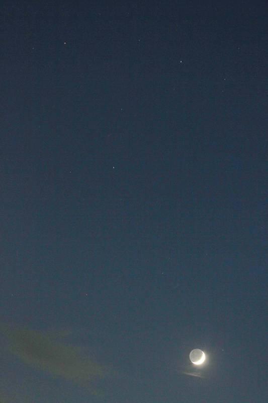 カワセミ・ウツギの枯れ葉を食べます/大接近前夜の火星・木星&三日月_b0024798_4583091.jpg