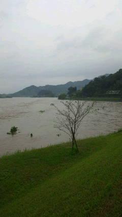 今年の梅雨の豪雨の影響。_f0018099_2202758.jpg