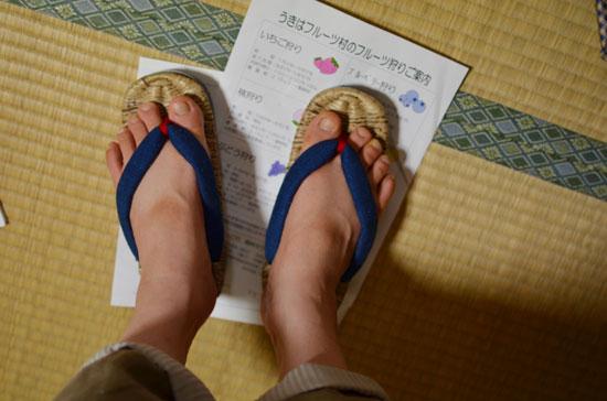わざわざ@九州編8:8月23日熊本へ_f0203920_23221476.jpg