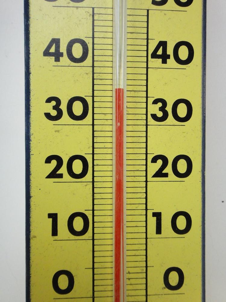 我が家は今日も猛暑日_c0111229_1915422.jpg