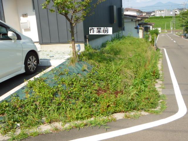 除草作業_c0186441_20101416.jpg