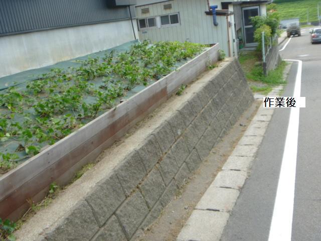 除草作業_c0186441_20105093.jpg