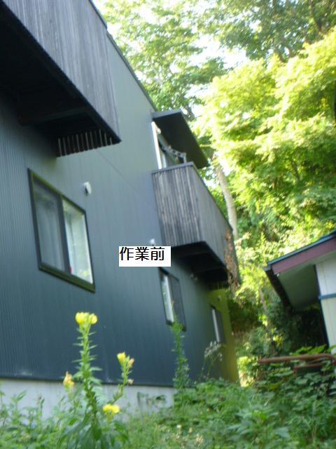 除草作業_c0186441_20122174.jpg