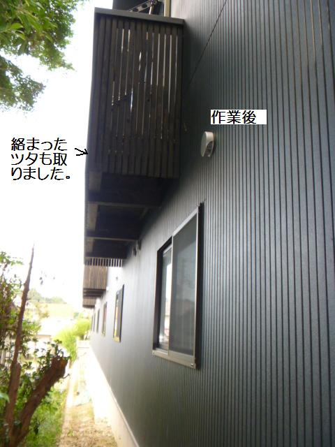 除草作業_c0186441_2017116.jpg