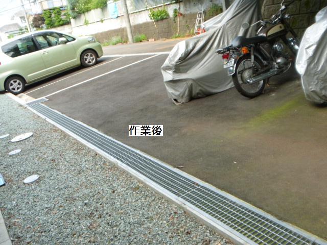 除草作業_c0186441_20194059.jpg