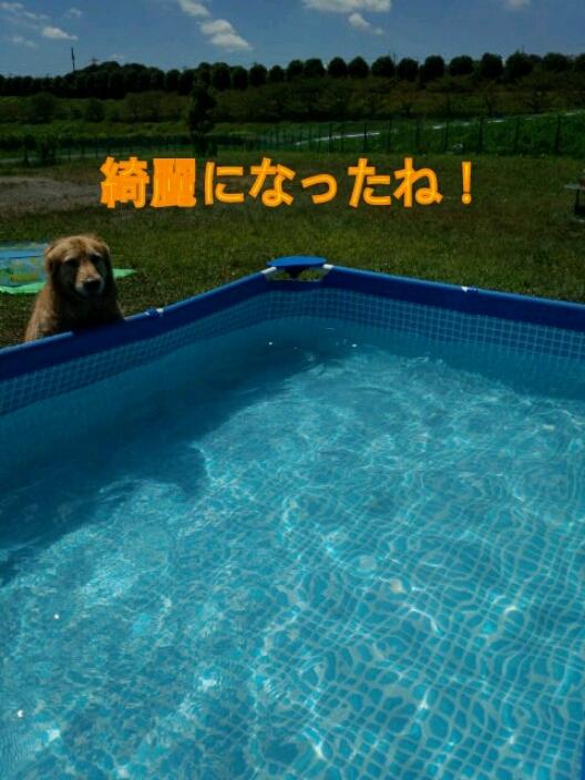 f0230380_1542790.jpg
