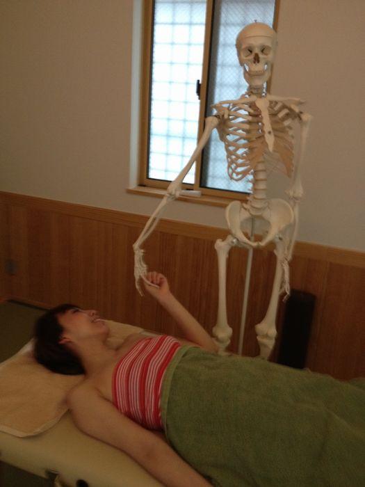 整体とは身体を整えるのだね。_a0050302_340913.jpg