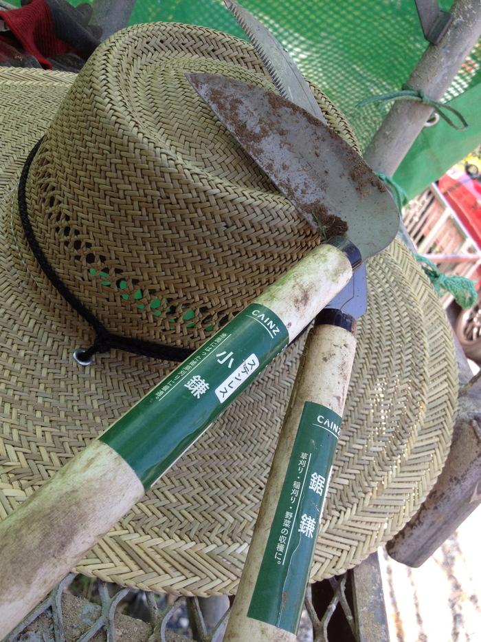 草刈り...暑いぜyo!_d0122640_19224738.jpg
