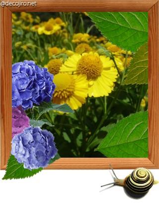 f0031546_20123288.jpg
