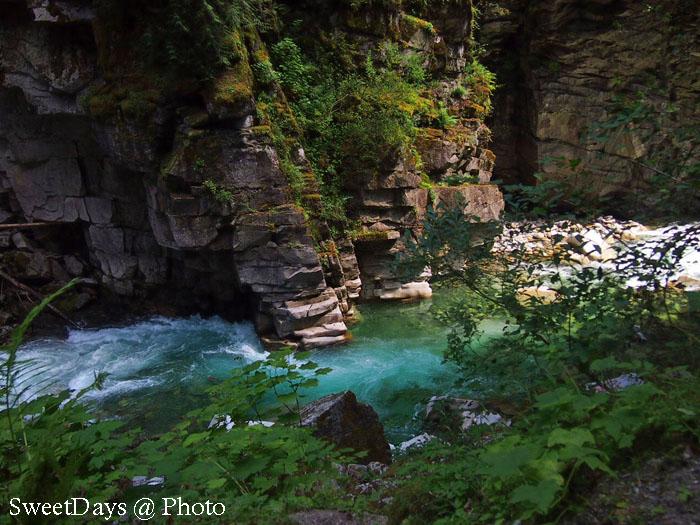 Banff~Shuswap~Vancouver_e0046675_11192080.jpg