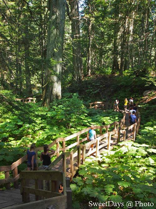 Banff~Shuswap~Vancouver_e0046675_1121241.jpg