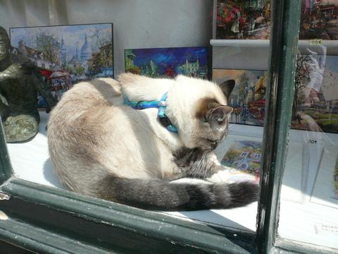 世界の猫 写真館 in  パリ_e0237625_129887.jpg