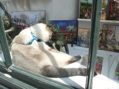 世界の猫 写真館 in  パリ_e0237625_1312992.jpg