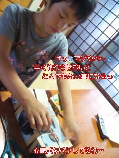 c0195031_1331358.jpg