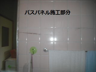 f0031037_2083259.jpg