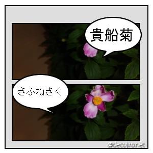 f0031546_15252837.jpg