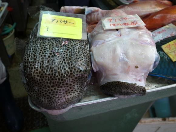 沖縄お魚の旅 その3 ~アバサー~ 120810、12_c0237483_1384137.jpg