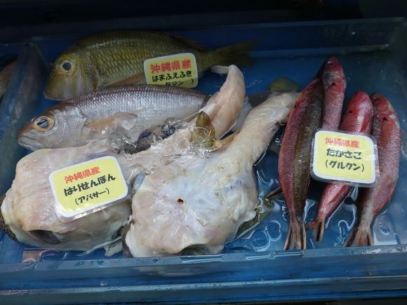 沖縄お魚の旅 その3 ~アバサー~ 120810、12_c0237483_1472059.jpg