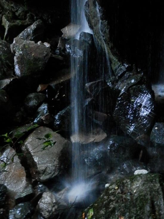 「滝浴び」て~~☆_a0125419_2019859.jpg