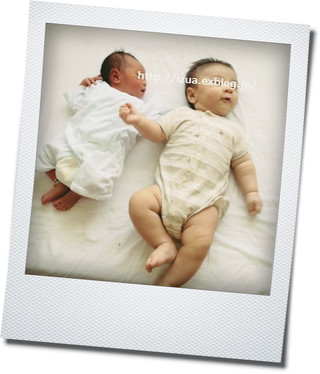 赤ちゃんを見に行く_e0214646_16425823.jpg