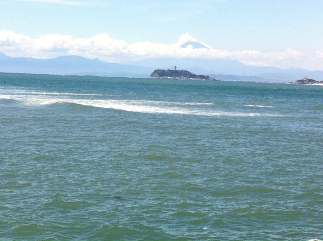 8月26日 富士山を望む_d0171384_1420659.jpg
