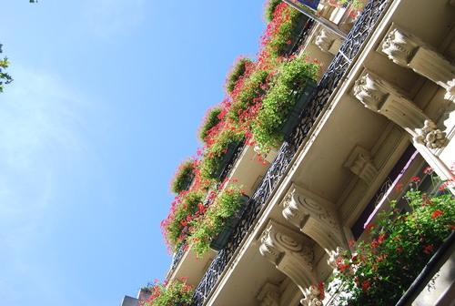 あこがれの 花の都の 夏休み  [PARIS その1]_f0101201_22252648.jpg
