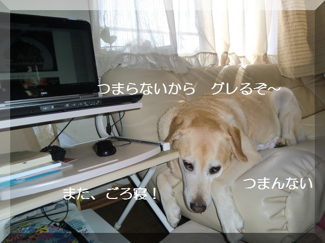 d0243802_16381590.jpg