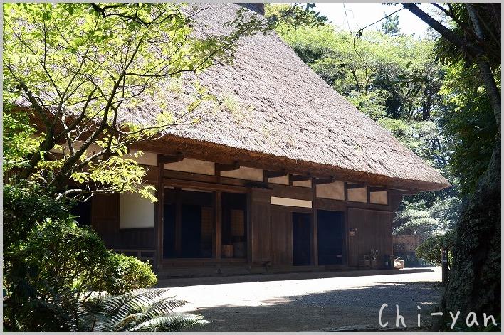 横浜 「三渓園」_e0219011_1691858.jpg