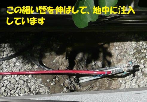 f0121712_1513322.jpg