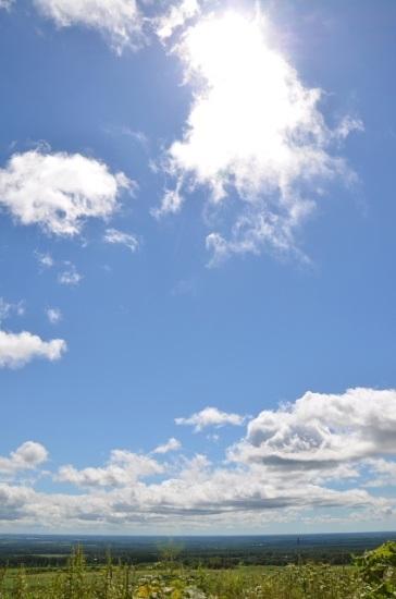 2012年8月27日(月):残暑再来![中標津町郷土館]_e0062415_1918369.jpg