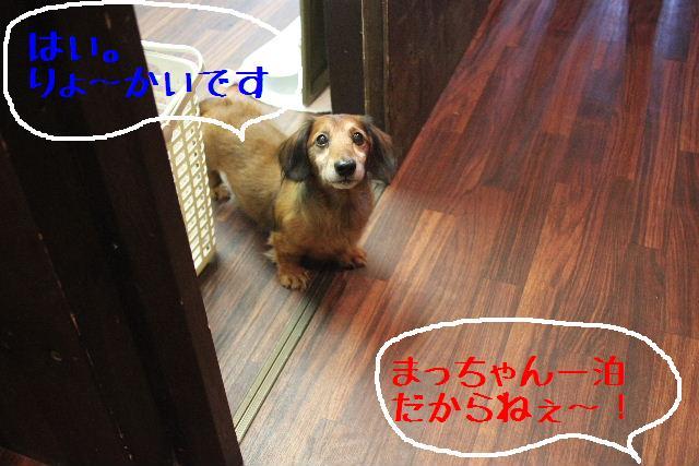 b0130018_011982.jpg