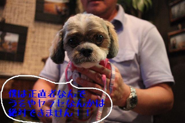 無事!!_b0130018_1710356.jpg