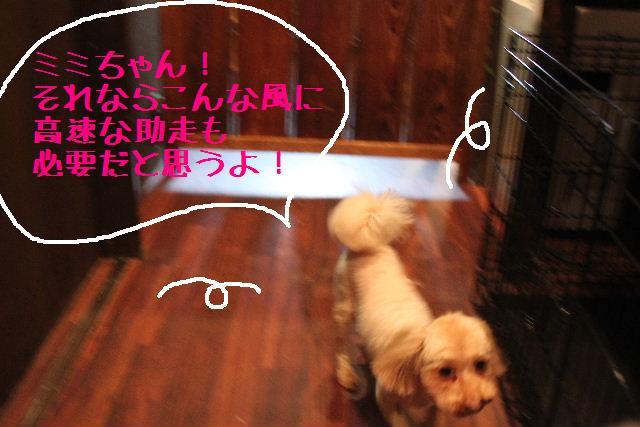 無事!!_b0130018_17164375.jpg