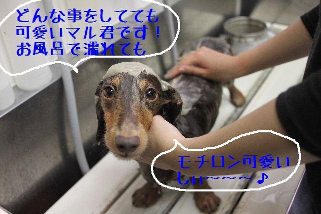 無事!!_b0130018_178049.jpg