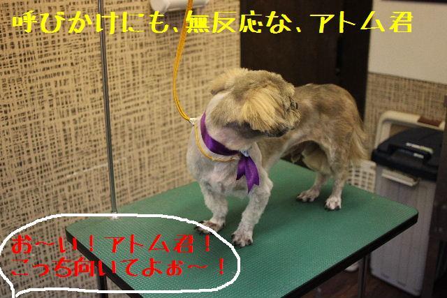 無事!!_b0130018_1795647.jpg