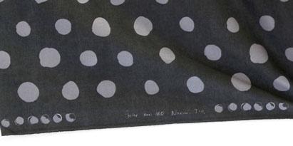 Pocho nani IRO textile A/W_f0129726_22522277.jpg