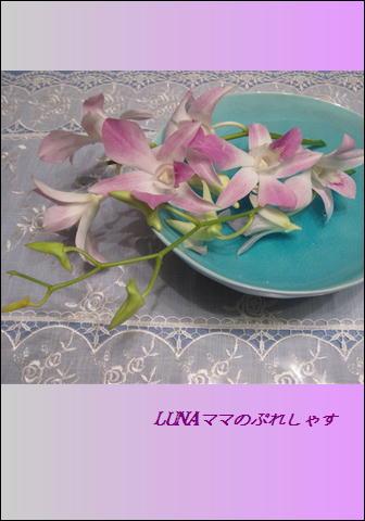 f0008449_23142689.jpg