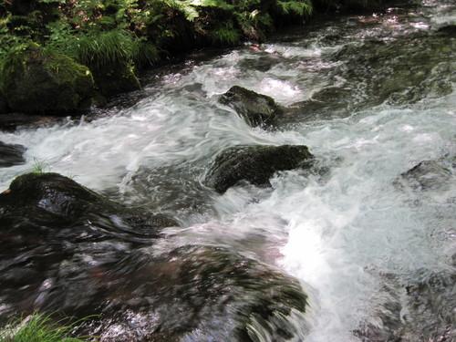 ANCIENT HOTEL ~ 竜返しの滝で涼む♪_f0236260_23243570.jpg