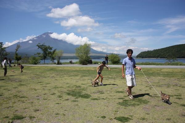 富士山のふもとで_f0126965_2044343.jpg